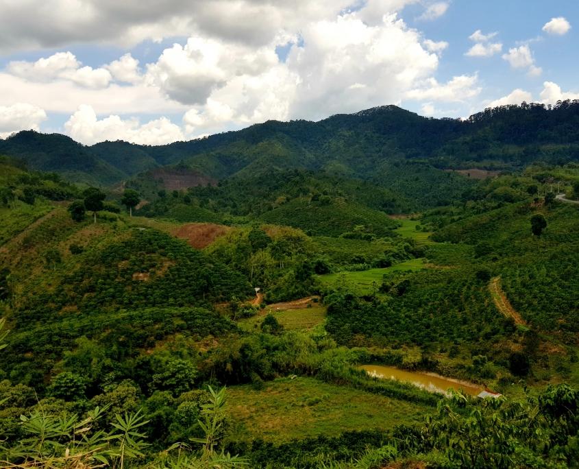 vietnam-paysage