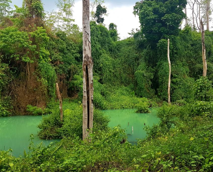 vietnam-paysage-voyage