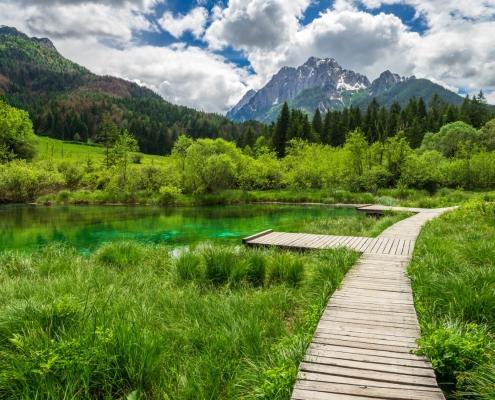 reserve-naturelle-zelenci-slovenie